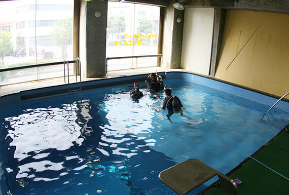 プール体験